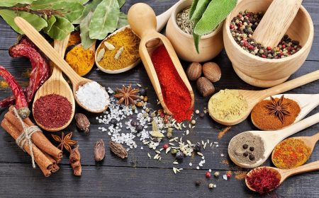 6916506-herbs-spices http7themes.com